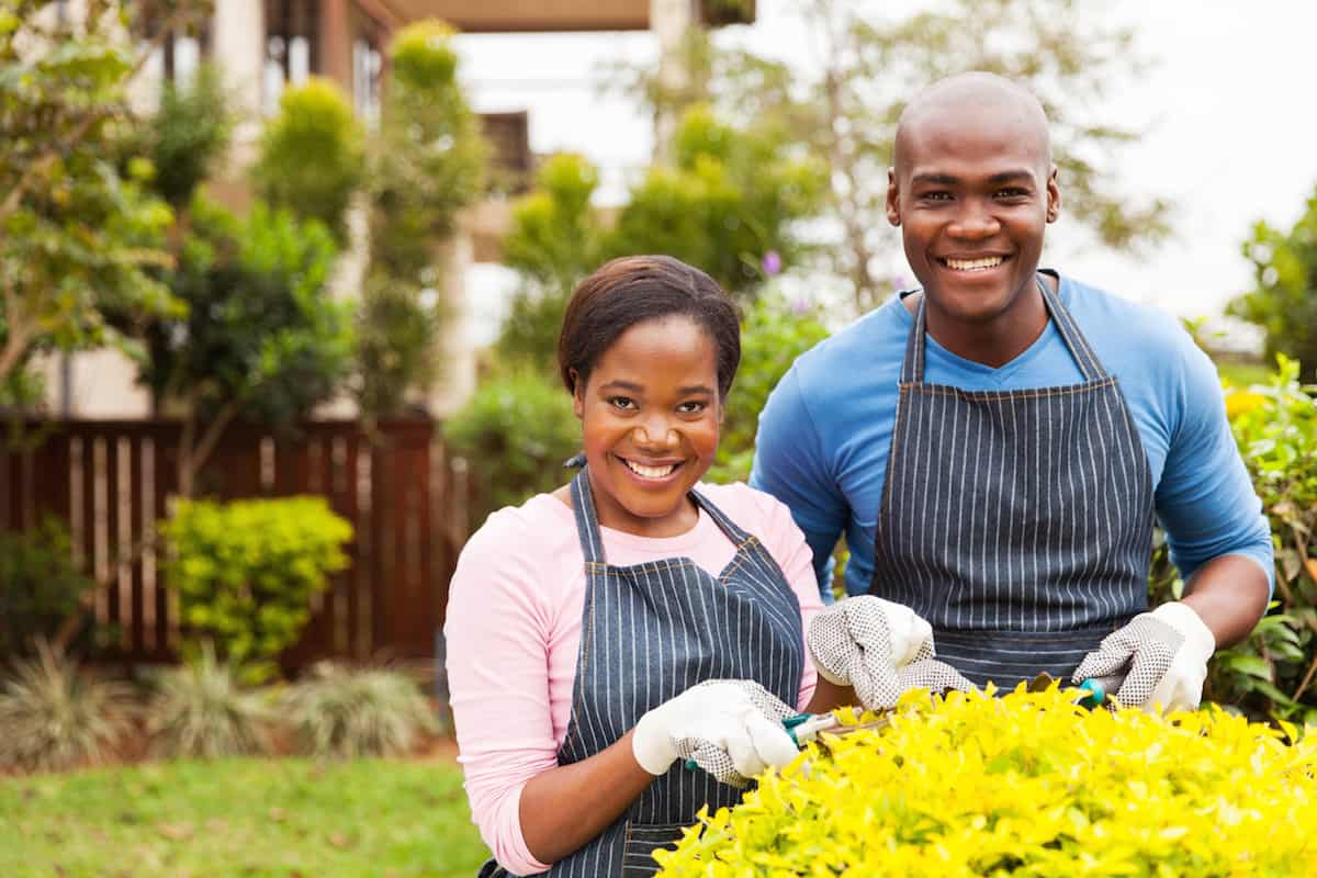 afro american couple working in home garden